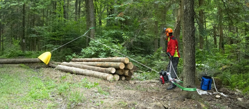 Winch pulling log with skidding cone attached